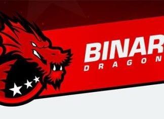 BinaryDragons