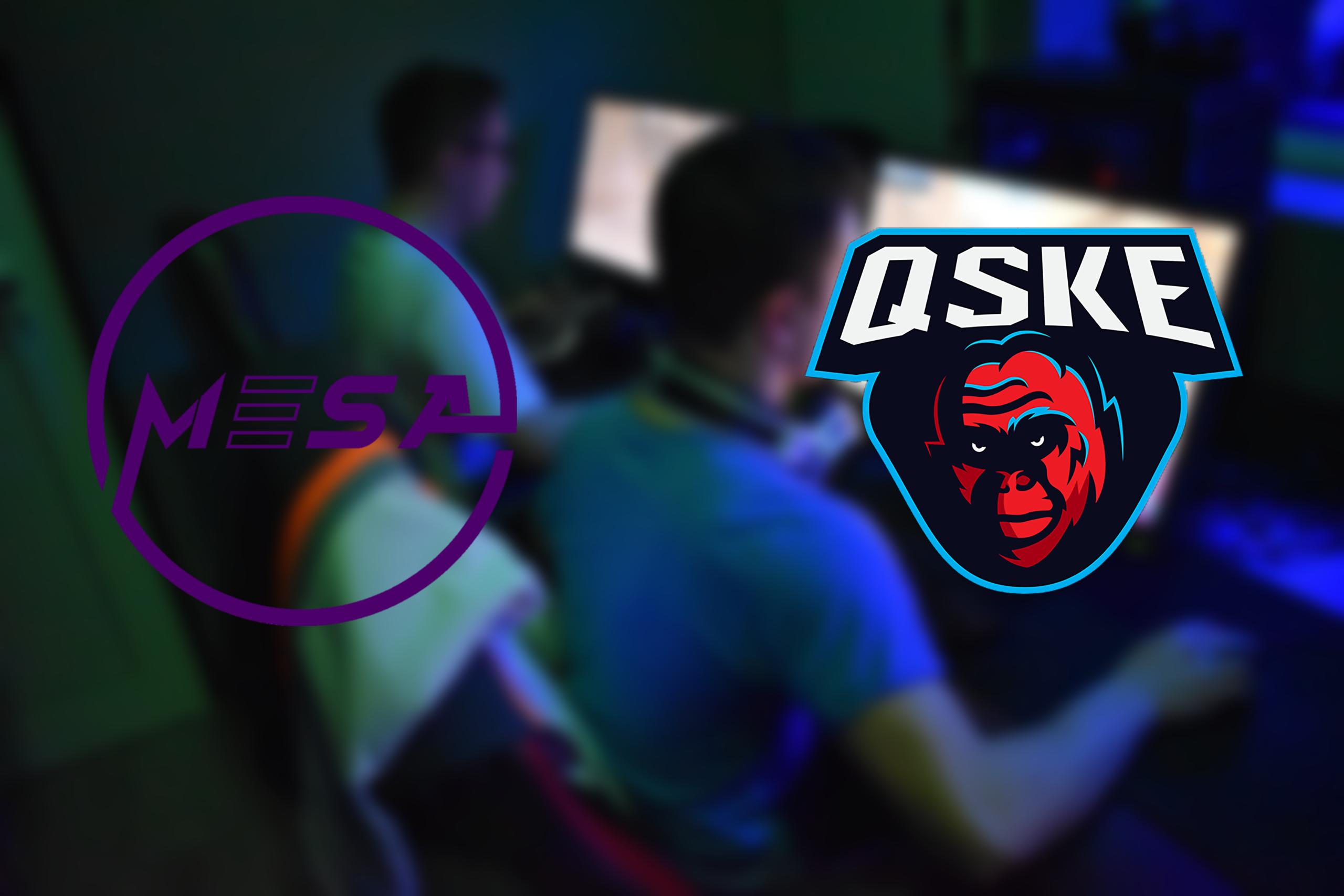 QSKE Gaming MESA_MK